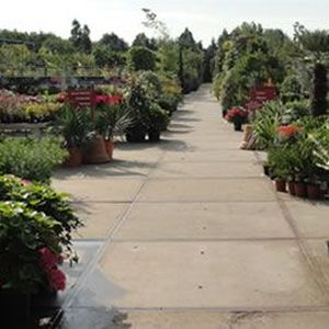Global Garden B.V. image 2