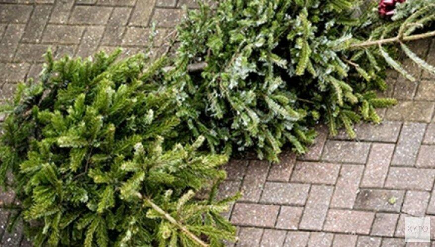 Kerstbomeninzameling woensdag 9 januari 2019