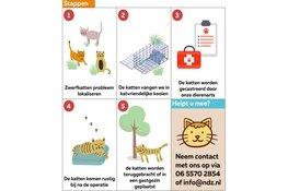 Zwerfkatten in Wassenaar